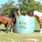 Bi9g Bale Buddy from Bitless Equestrian