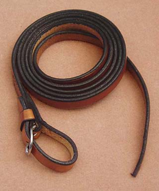 western leather reins Dr Cook